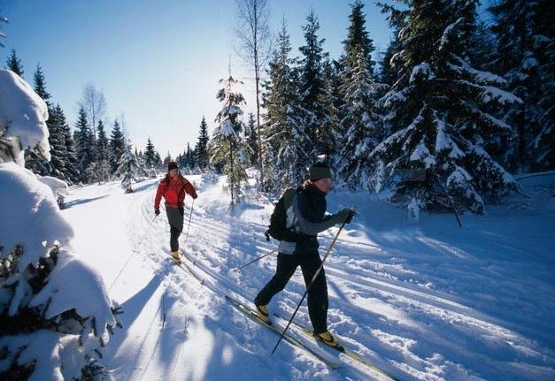 Варикоз и лыжи